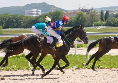 corse di cavalli: Colpo di azione dei fantini in corsa di cavalli, Pyatigorsk, Caucaso.