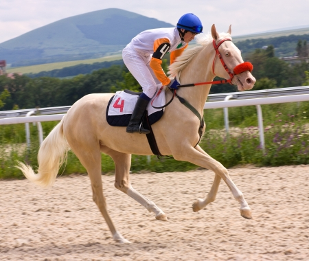 Horse rider riding a Horse in racing game