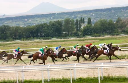 """corse di cavalli: Corsa per il premio della """"Salamova"""" in Pyatigorsk, Caucaso del Nord, Russia."""