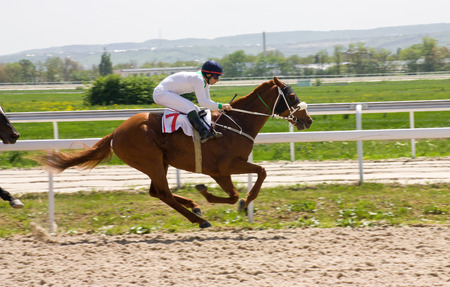 Action shot of jockeys in horse race,Pyatigorsk,Northern Caucasus,Russia  Standard-Bild