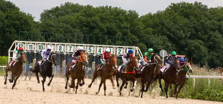 pyatigorsk: PYATIGORSK,RUSSIA - JULE 06:Race for the prize of the Derby,Jule 06,2014  in Pyatigorsk,Northern Caucasus, Russia. Editorial