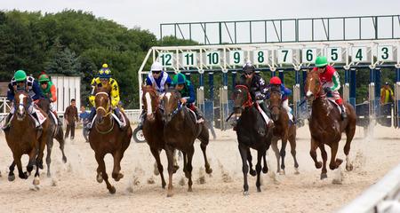 pyatigorsk: PYATIGORSK,RUSSIA - JULY 06, 2014: Race for the prize of the OKS, July 06,2014  in Pyatigorsk, Northern Caucasus, Russia. Editorial