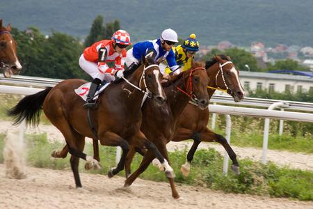 Horse riders in Pyatigorsk,Norhern Caucasus, Russia  Stock Photo