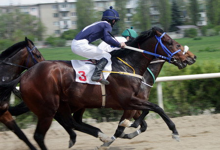 action shot: Action shot of jockeys in horse race in Nalchik.