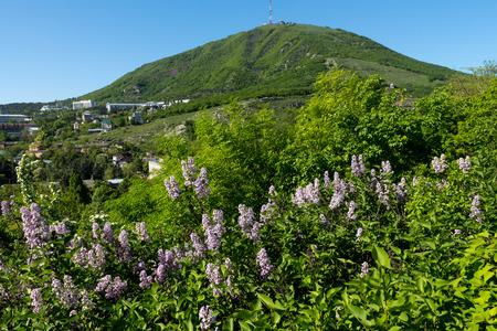 pyatigorsk: View of the majestic Mount Mashuk from Pyatigorsk ,Northern Caucasus,Russia. Stock Photo