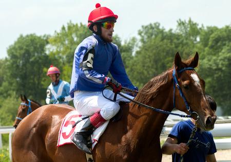pyatigorsk: The jockey and thoroughbred horse in Pyatigorsk
