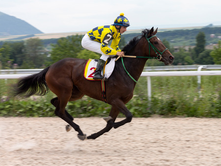 thoroughbred horse: Race for the prize of the Pyatigorsk in Caucasus