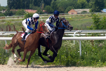 thoroughbred horse: Race for the prize of the Otkritia in Pyatigorsk,Northern Caucasus, Russia.