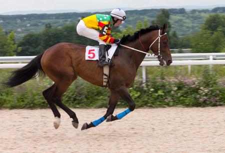 rapidity: Jockey on horse.Hippodrome of Pyatigorsk (Northern Caucasus), season 2015.