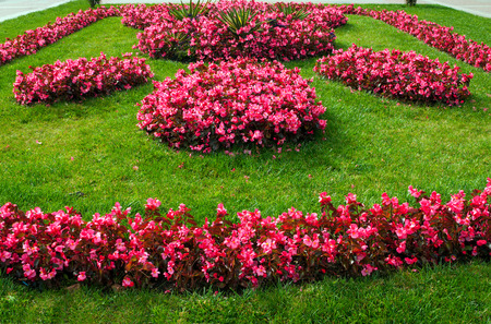summery: Summery flowerbed in park of Kislovodsk Stock Photo