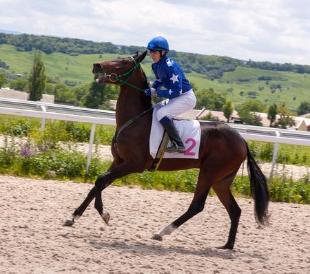 pyatigorsk: Action shot of jockeys in horse race in Pyatigorsk.