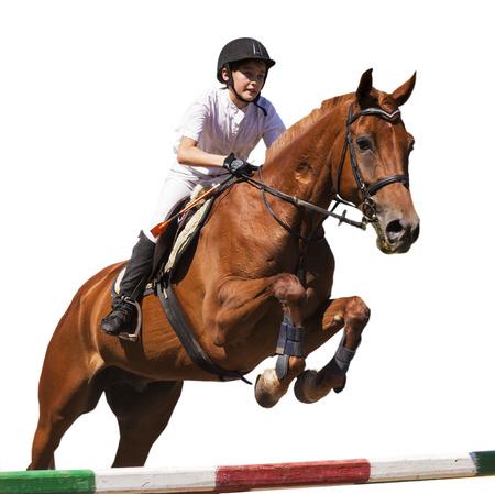 salto de valla: Amazona en caballo de la bah�a en la demostraci�n de salto, aislado sobre fondo blanco.