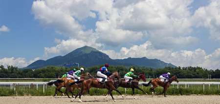 pyatigorsk: The race for the prize of the Jockeys-kluba in Pyatigorsk.