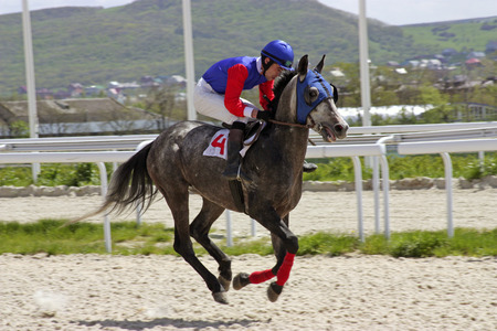 rapidity: Jockey on horse.Hippodrome of Pyatigorsk (Northern Caucasus), season 2011.
