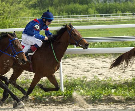 pyatigorsk: Horse race for the prize Vesenni in Pyatigorsk,Northern Caucasus,Russia.