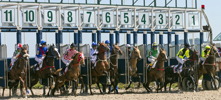 pyatigorsk: PYATIGORSK, RUSSIA - JULE 17: Start gates for horse races for the prize of Letni in Pyatigorsk, Caucasus, Russia on Jule 17,2016. Editorial