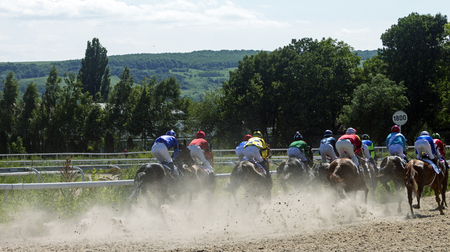 pyatigorsk: PYATIGORSK, RUSSIA-JUNE 18,2017: Start racing for the prize of the Candy Flyer, on one of the largest racecourses Russia, in Pyatigorsk.