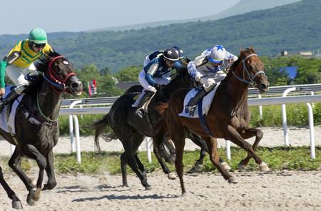 ピャチゴルスク, ピャチゴルスクでロシア-7 月 02, Ogranichitelni - 最古の 1 つ、ロシアで最大の競馬場の従来の賞を 2017:Finish 馬のレース。