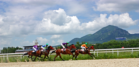 Pyatigorsk,Russia - Iuly 03,2011;Horse racing is a popular sport in Russia and betting is possible.Horse race for the prize Pyatigorsk, the four horses are galloping fast on sand race track.Racecourse one of the oldest and largest in Russia.