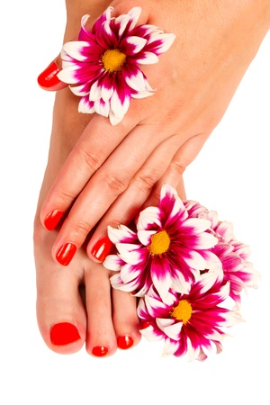 pedicure feet and manicure on hands of a young woman and yellow gerbera flower isolated on white background Standard-Bild