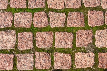adoquines: Adoquines de granito con hierba entre las piedras