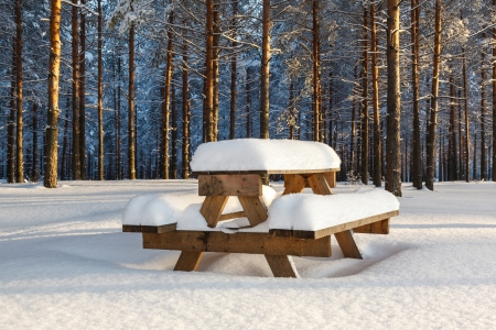 Winter pine forest and a table with benches under a layer of snow photo