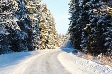 russian winter road and trees in snow blue sky Stock Photo - 18084837