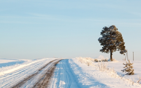 russian winter road and trees in snow blue sky photo