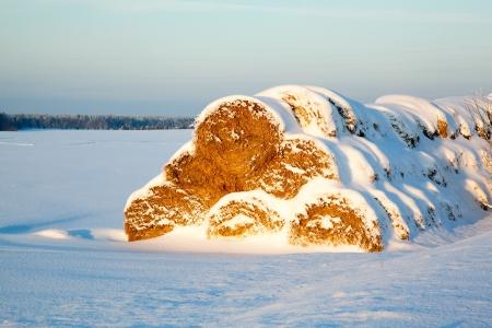 bales: haystack under snow at sunset
