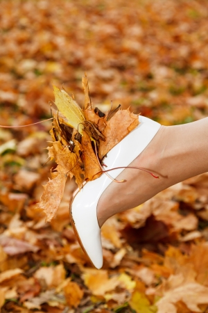 white shoes bride and autumn yellow maple leaves photo