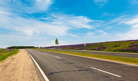 road in Russian summer in sunny weather photo