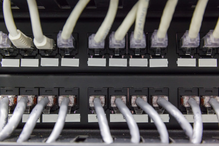 patch panel: Large group of white utp, patch panel in the server rack in the data center