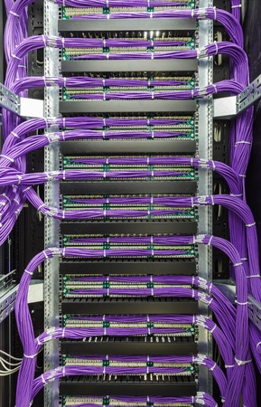 Large group of lilac utp, patch panel in the server rack in the data center