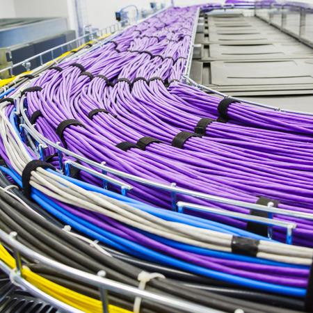 cable red: Gran grupo de cables UTP lila de Internet en Centro de Datos