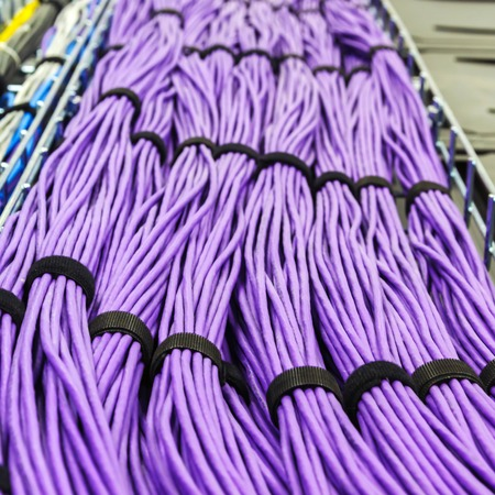 utp: Large group of lilac utp Internet cables in Data Center