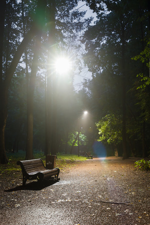 pavers: mist, benches on pavement in light lantern at night, Moscow summer park Stock Photo