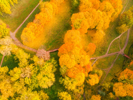 autumn and yellow maple leaves in the park in Kolomenskoye park in autumn season aerial view, Moscow, Russia.