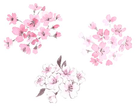 Ensemble d'illustrations de fleurs de cerisier