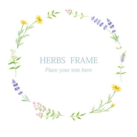 Herb Circle Rahmen mit Aquarell bemalt Vektorgrafik