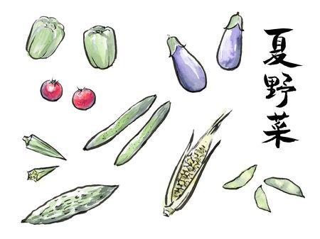 Sumi Illustration of Summer vegetables