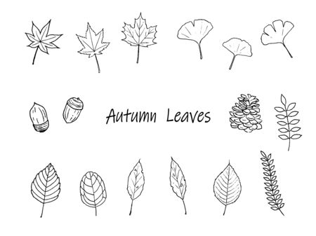 Pen drawing set of autumn leaves