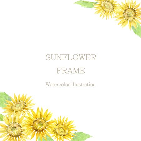 Sunflower Frame Painted by Watercolor.
