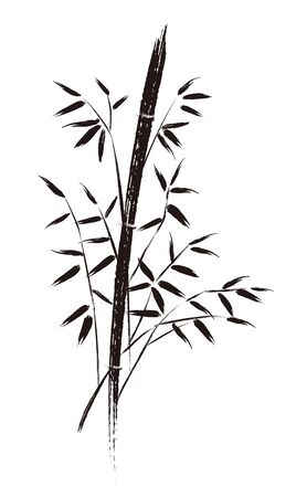 Ink painting vector of bamboo illustration.  イラスト・ベクター素材