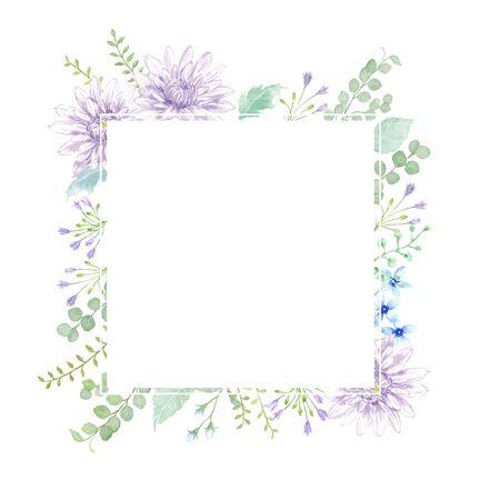 illustration Watercolor of chrysanthemum. 写真素材