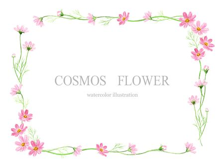 illustration Watercolor of cosmos flower frame.