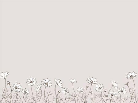 Pen drawing of cosmos flower field.