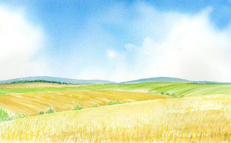illustration Watercolor of wheat field.