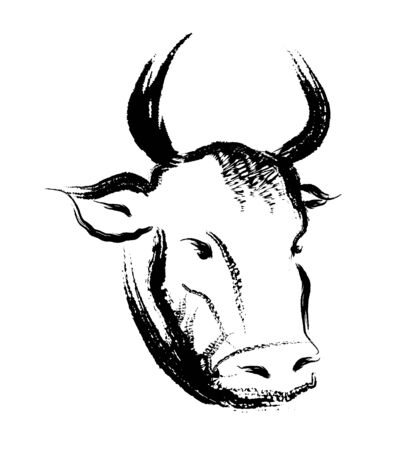 Ox ink painting vector illustration.