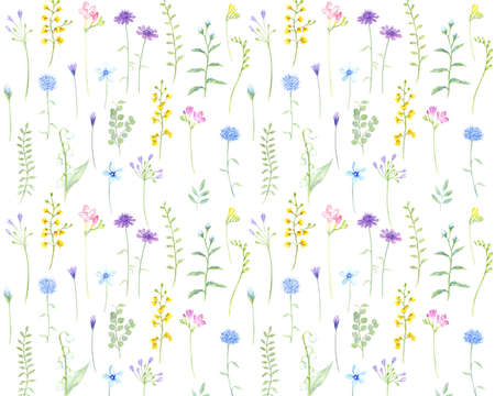 Watercolor illustration of botanical pattern