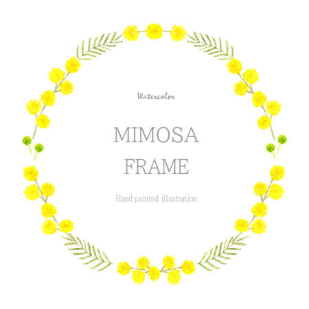 Mimoza frame painted with watercolor Vector Illustration
